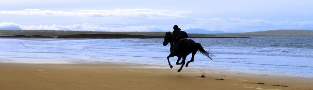 Ihr Pferd soll täglich Leistung bringen. Und wie fit fürs Pferd sind Sie?